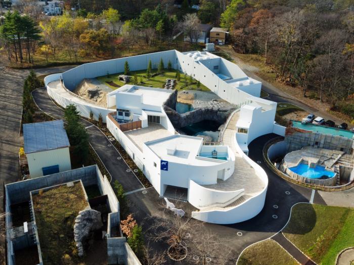 円山動物園 ホッキョクグマ館 画像