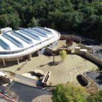 動物園の「行動展示」とは?変わりつつある日本の動物園のあり方