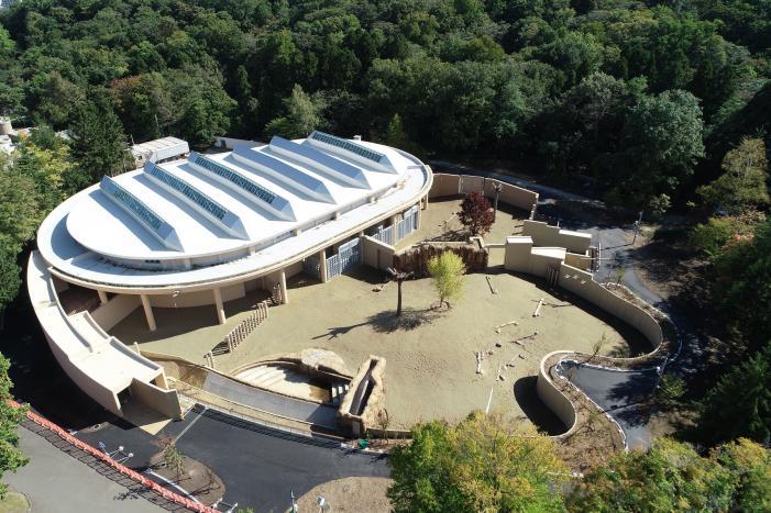 円山動物園 ゾウ舎 写真