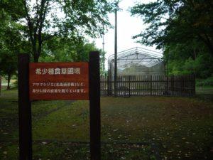 丸瀬布昆虫生態館